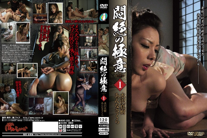 AKHO-028 The Agonizing Secret 1 Maki Mizusawa Sakura Anna